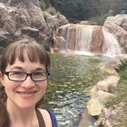 Waterfall at Wilderness Lodge, Walt Disney World, Orlando, FL | Ross and Jamie Adventure