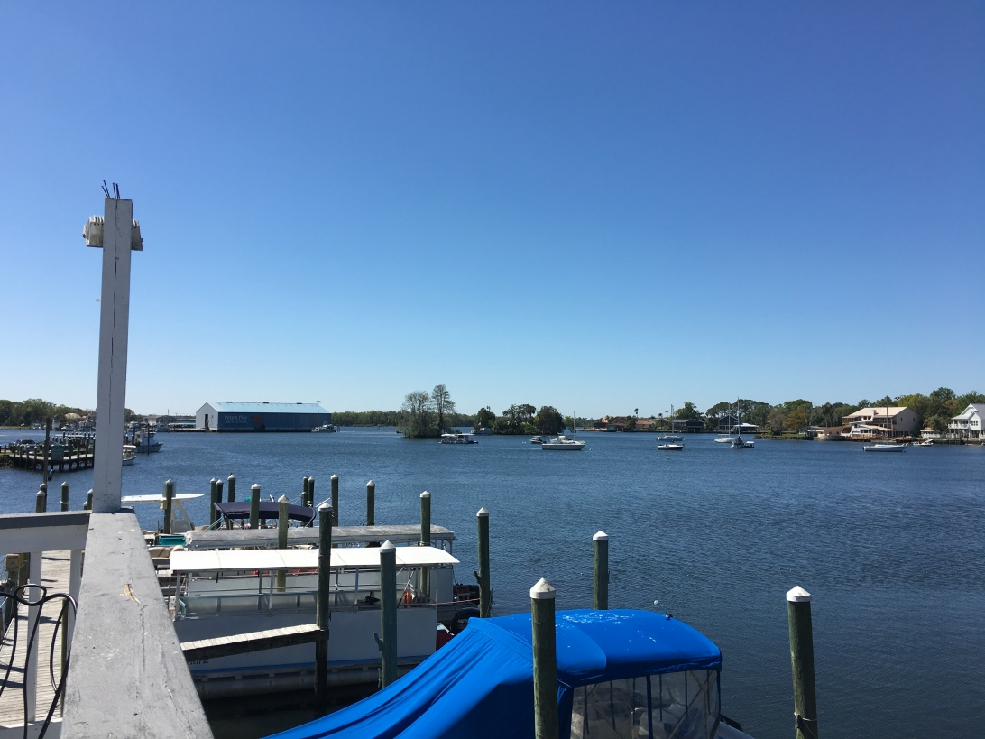 A view from behind an ice cream shop on Crystal River, FL | Ross and Jamie Adventure