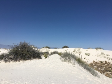 White Sands National Monument in Alamogordo, NM | Ross and Jamie Adventure
